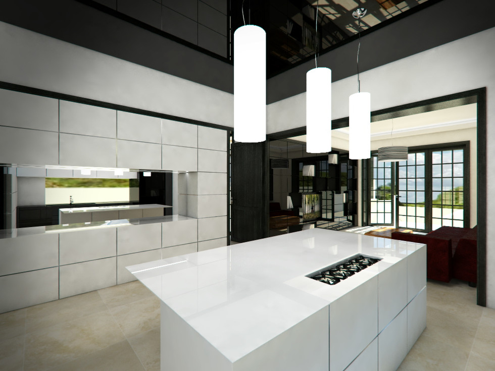 Black-and-white minimalist kitchen | by CADFACE