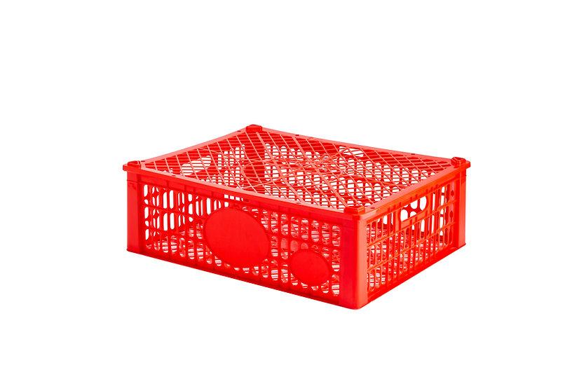 ตะกร้ามังคุด (N)/ Fruit Basket (Mangosteen N)