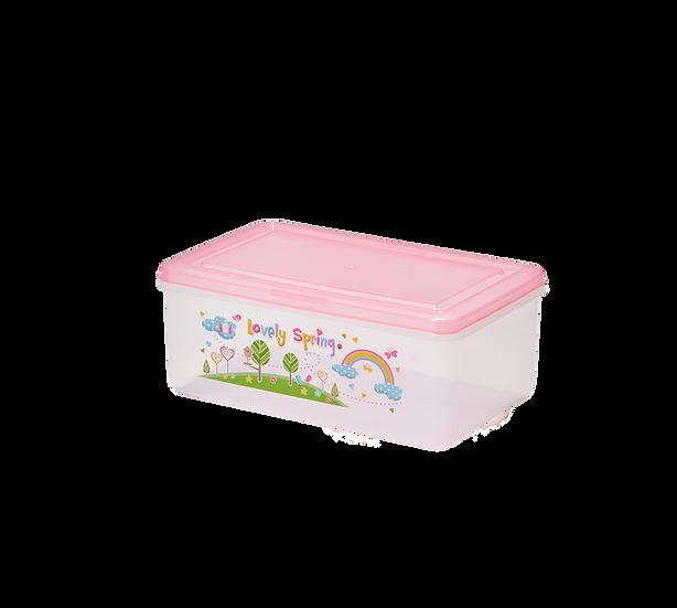 กล่อง 9869/9869 Storage