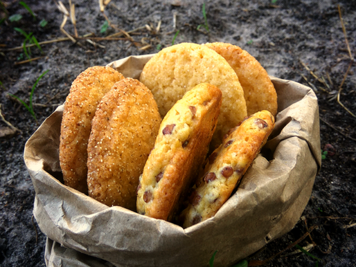 Dura - grain silo cookies with teff, sorghum and maize