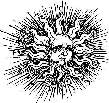 Snout In The Sunlight 2.jpg