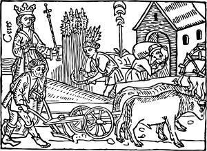 medieval harvesting.jpg