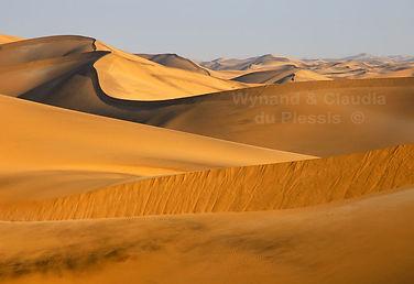 Dunes near Swakopmund: landscape031