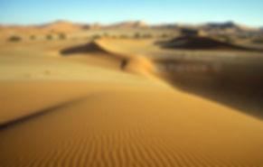 Sea of sand - Namib Desert: landscape043