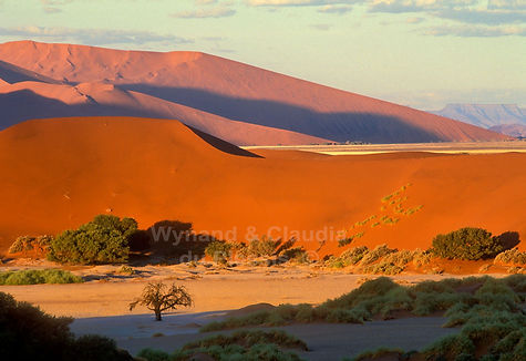 Sossusvlei at sunset: landscape003