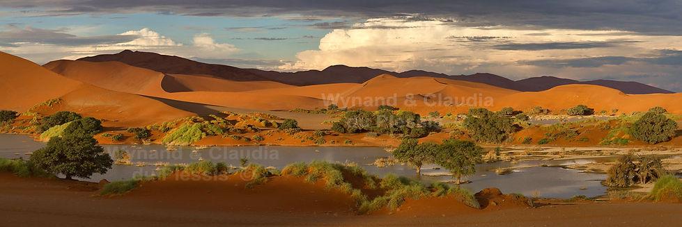 Sossusvlei panorama: landscape038