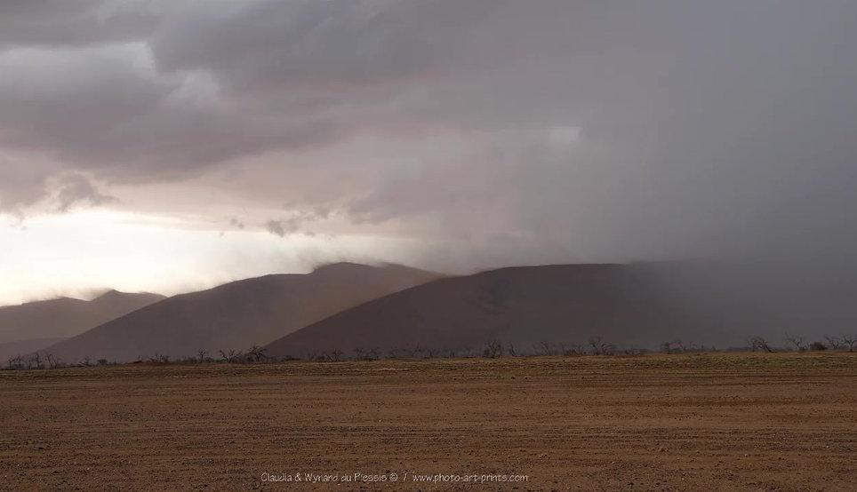 Desert Storm photo animation