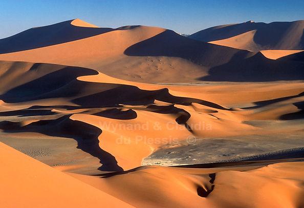 Wild desert - dunes of the Namib Desert: landscape002