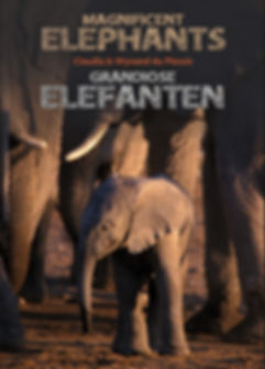 Magnificent Elephants - Claudia & Wynand du Plessis