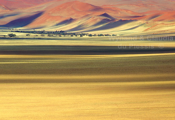 Shades of the Namib Desert: landscape011