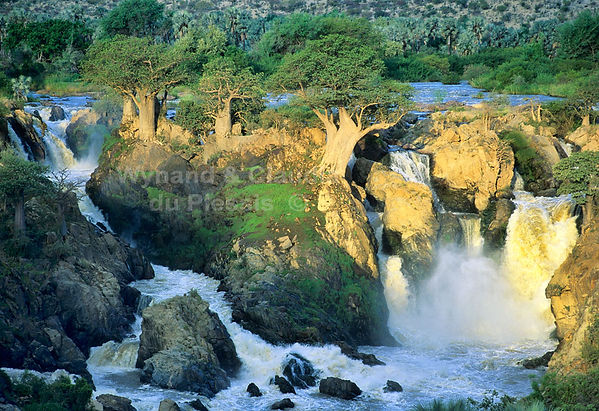 Epupa falls and Baobab trees: landscape034