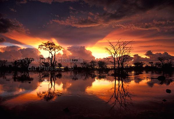 Etosha sunset, Namibia: landscape047