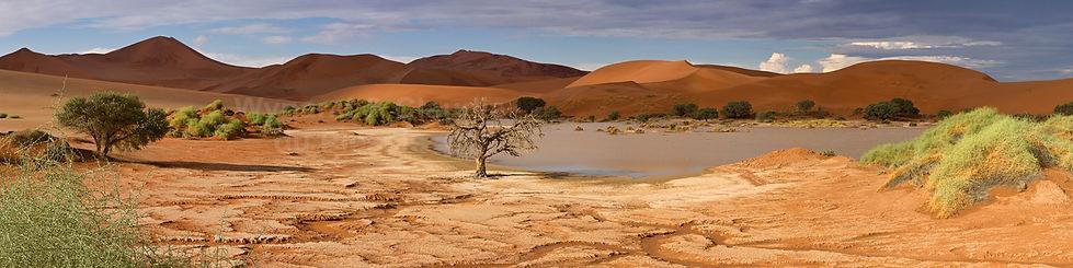 Naravlei panorama: landscape037