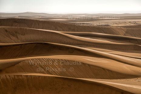 Dunes near Swakopmund: landscape045
