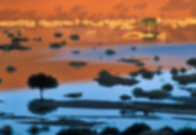 Flooded pan at sunrise near Sossusvlei: landscape005