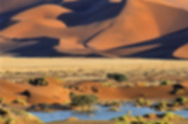 Sossusvlei with water: landscape067