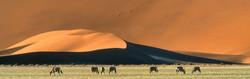 landscape038