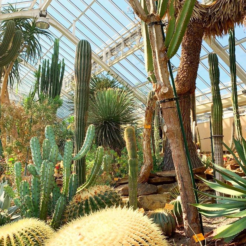 Mon jardin Botanique... online !