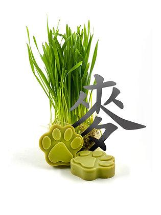 小麥草苦楝寵物皂