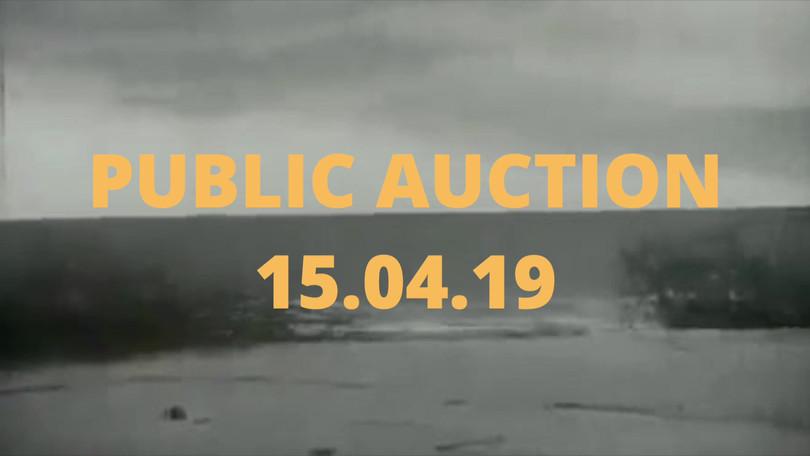 Public Auction 19.mp4