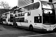 Busses - Mono