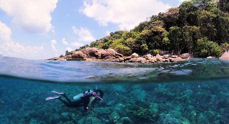 Half underwater.jpeg