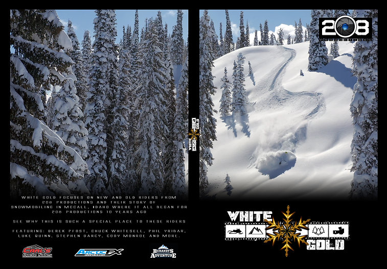 Whitegoldcover-noguides.jpg