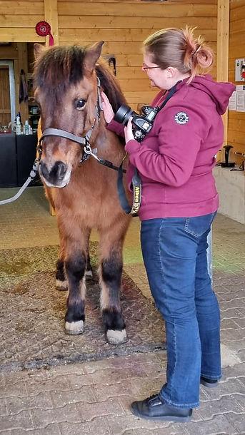 Jacky Fotografie mit Pferd.jpg