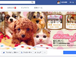 ペットハウスマリー様|facebookページ制作