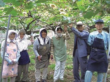 キウイ農家.jpg