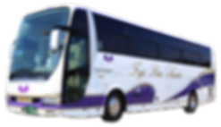 徳島 貸切バス 藤西阿観光バス