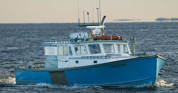 maine boat tours