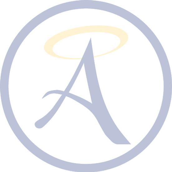Angel Care Network Logo