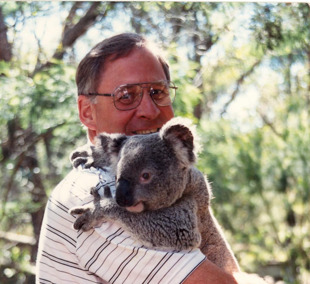 Koala Love Affair.jpg