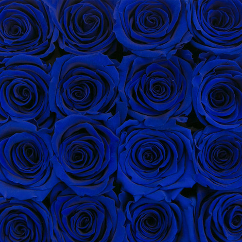 forever quadrata small black cube box blue infinity roses