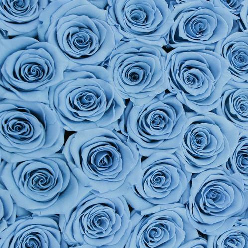 forever medio medium black round box light blue infinity roses