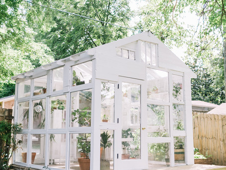 Dramatic Greenhouse Transformation