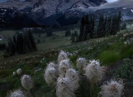 Raymond Stiehl: Pacific Northwest Landscape Photographer