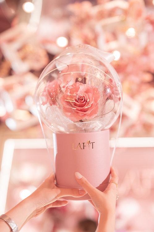 Rose Sparkling Bubble