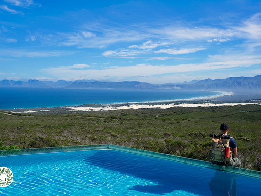 grootbos 5* luxury eco nature reserve | south africa - in the heart of the cape floral kingdom