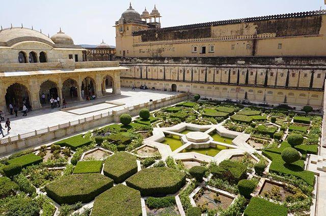 the #gardens of the #amber #fort _ #jaipur #india -_-_#travel #traveling #travelgram #instatravel #wanderlust #backpacking #guardiantravelsn