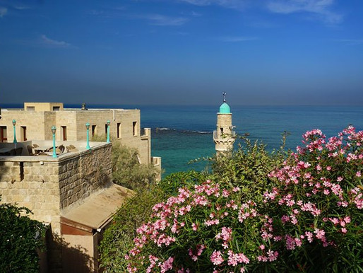 touring   israel   '17 - a conflicted holy land