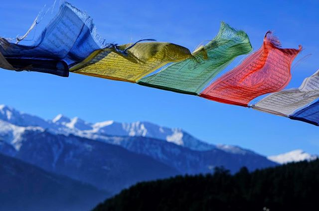 #prayer #flags are used to #bless the surrounding #countryside each flag has a specific script written to #nature _ #manali #india -_-_#trav