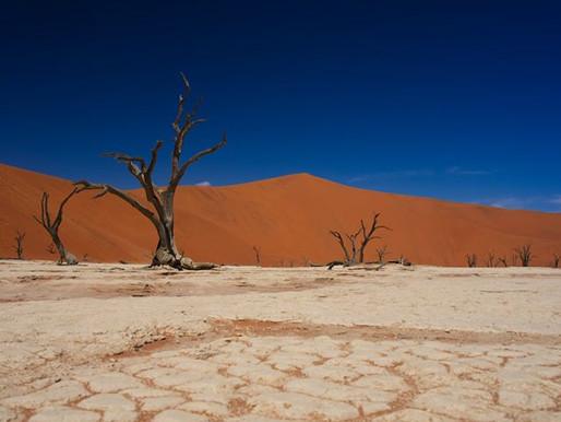 touring | namibia & botswana - 4x4 odyssey into the unknown