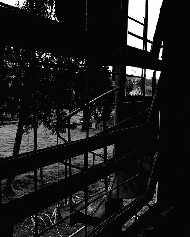 In this shot I tried to #capture the #feeling of the #sanitarium _ defiantly a place of #death #crows #everywhere _ #blackandwhite -_-_#trav
