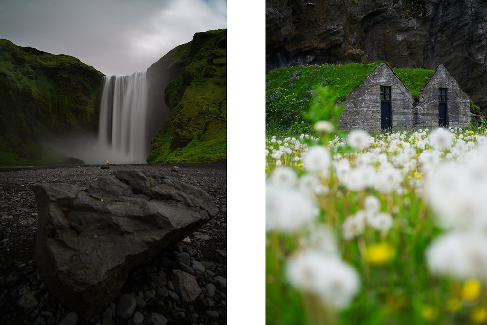 iceland waterfall and flowers