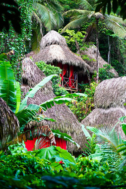 dominican-tree-house-village
