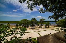 view-of-mangroves-soloum-delta