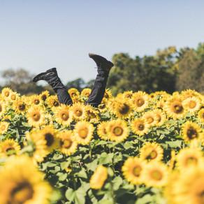 Libera te stesso: 4 webinar per migliorare la nostra vita