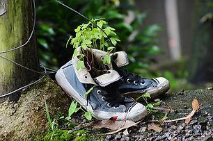 shoes-5351149_1280.jpg